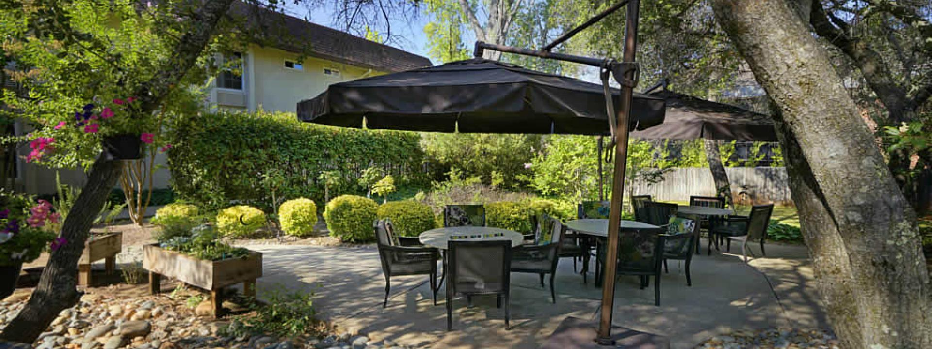 Beautiful shaded patio area with plants, planters, trees and patio table, chairs and umbrella
