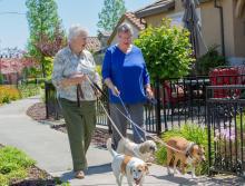 Two women walking three dog
