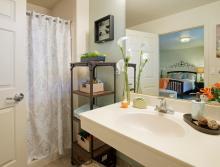 Bathroom, sink and shower.