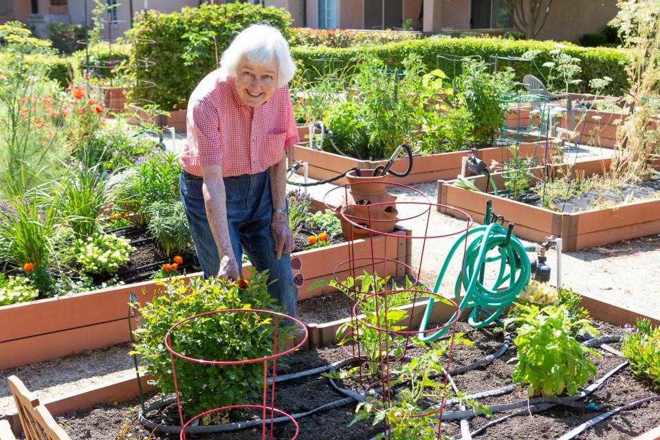 EVC-resident-in-vegetable-gardening